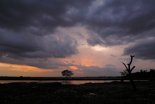 travel blue trees sunset red sea sky cloud lake colour tree water clouds landscape asia purple bright outdoor dusk wetlands srilanka ceylon uva grasslands southasia uvaprovince weerawilalake
