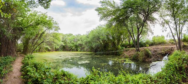 2016-06-27 Los Olmos Lodge, Bass Pond