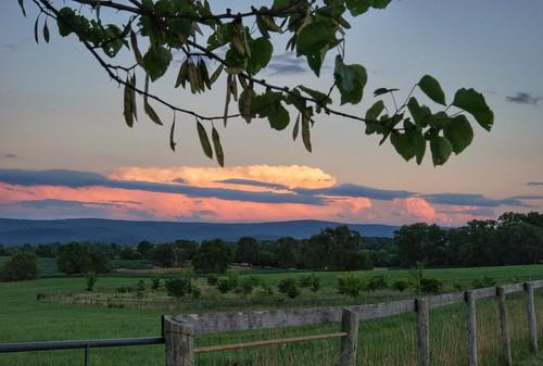 sunset green field clouds