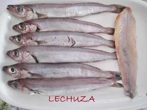 BACALAOS RELLENOS DE GRELOS  (13)