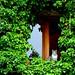 O Romeo o Romeo... where art thou? by Landersz