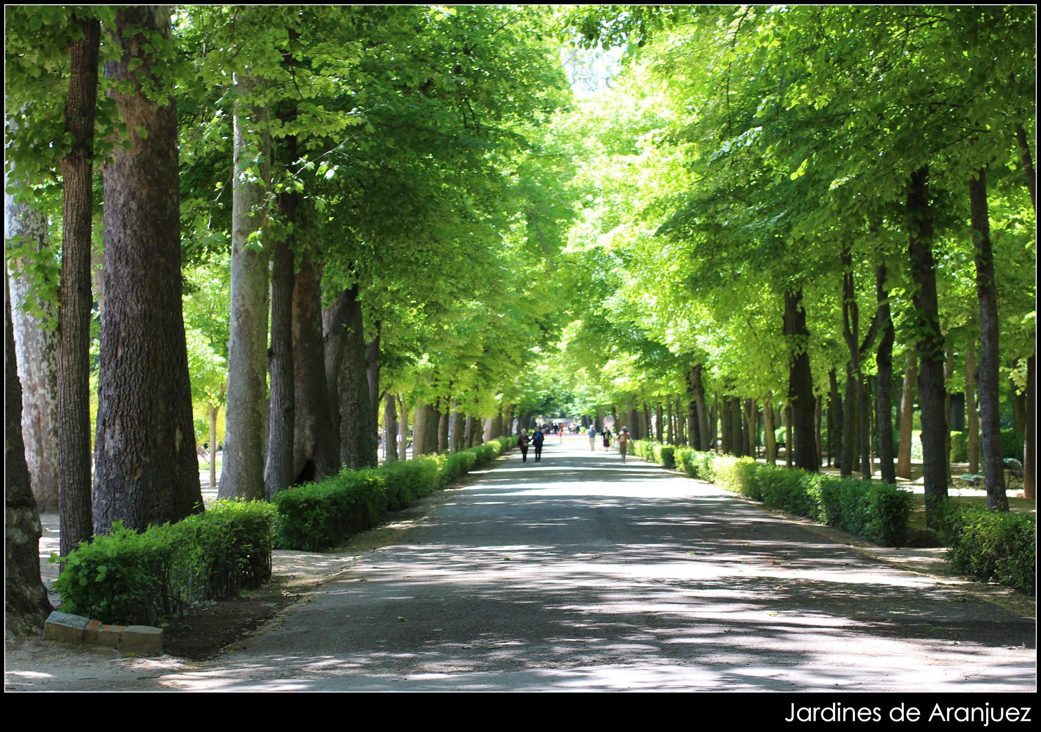 Jardines de aranjuez en mayo jardines de aranjuez en mayo flickr photo sharing for Jardines de aranjuez horario