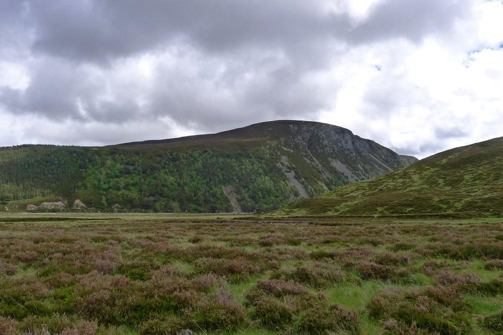 Upper Glen Feshie