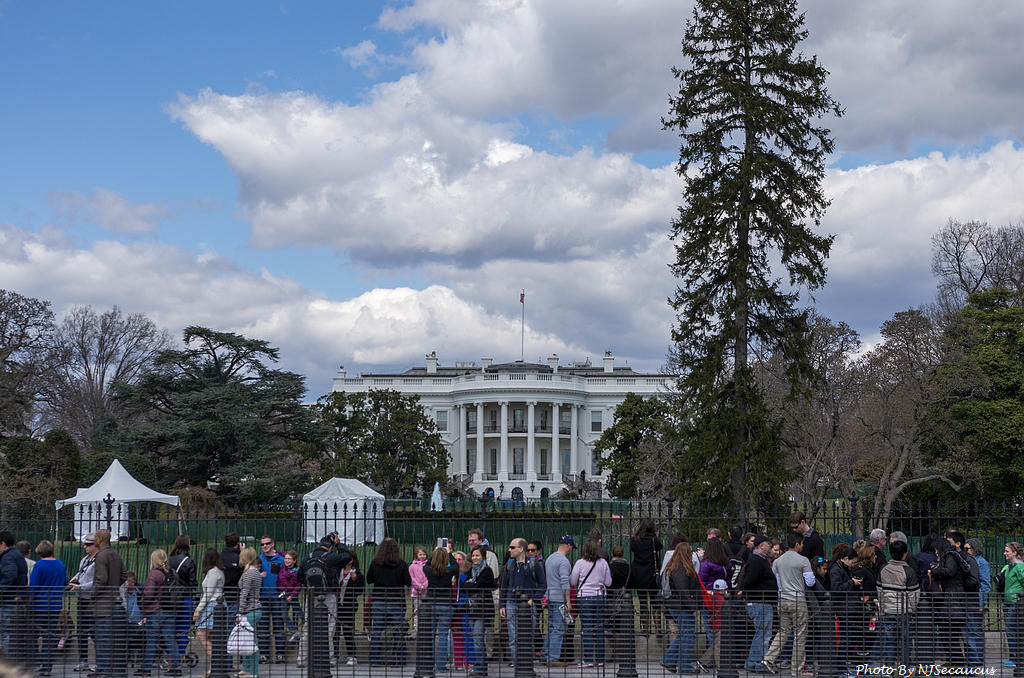 什麼?Kit Lens要帶我們遊美國首府華盛頓低溪賞櫻去?〈上〉