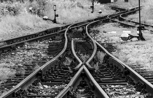 Weichen, Schmalspurbahn, JHMD by Zdenek Papes