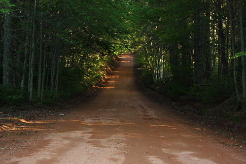 canada rural forest woods queens dirtroad pei appinroad clayroad