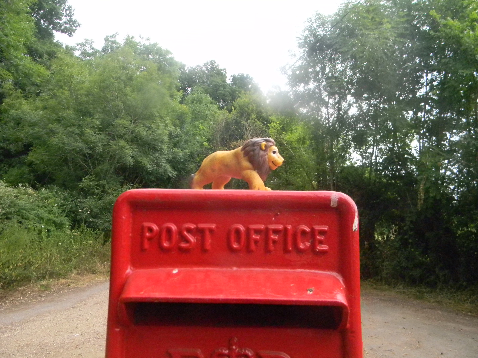 Wild beast Seen very close to the ampitheatre, probably an escapee. Mortimer to Aldermaston