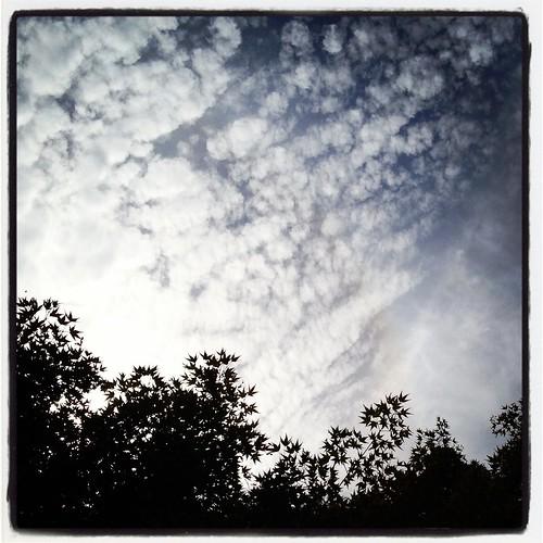 sky by Nature Morte