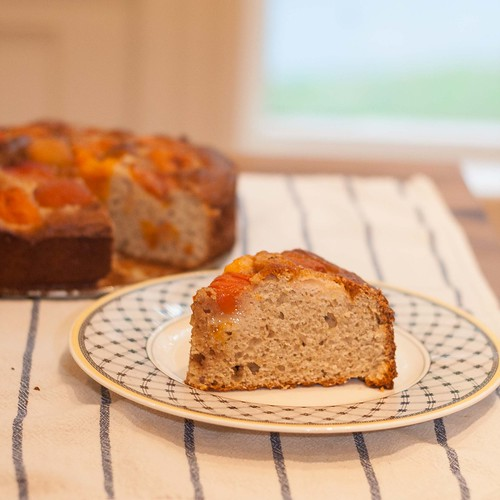 Apricot Rose Ricotta Cake (3 of 4)
