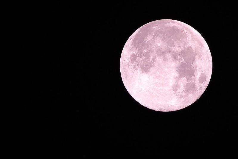中秋回家~貓咪月亮試拍