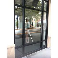 window(0.0), furniture(0.0), display case(0.0), door(0.0), sash window(1.0), glass(1.0), interior design(1.0),