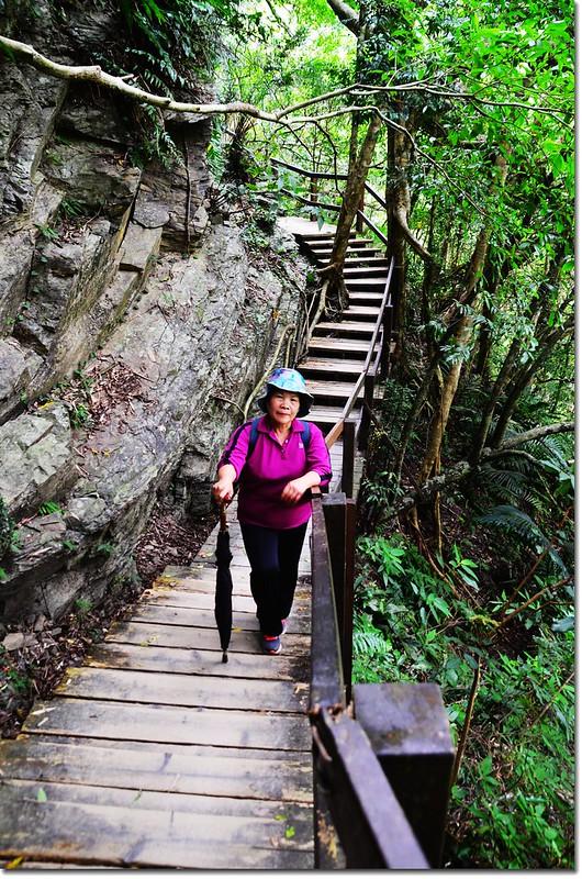 瀑布步道 6