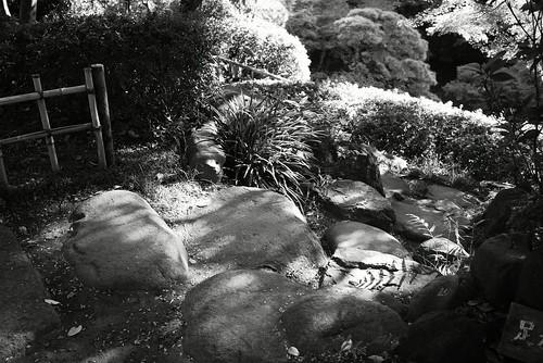 石たち by leicadaisuki