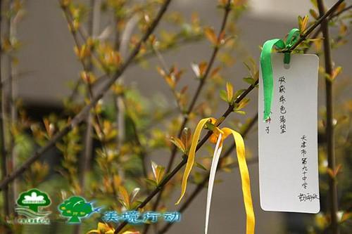 種樹祈福,圖片來源:天津綠色之友。