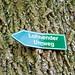 IMG_0924.jpg by thorsten.rinne
