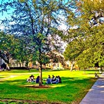 77 degrees= outdoor class in February. Who's looking forward to this next year? #onlyattulane #onlyinneworleans