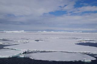626 Weddell Sea