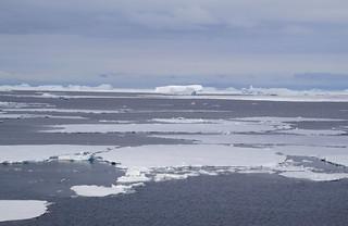 613 Weddell Sea