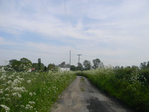 Cotage with cow parsley