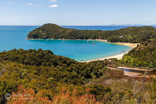 Anchorage Bay - Abel Tasman Coast Track
