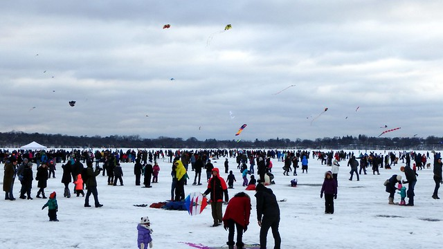 Hundreds of people and several flying kites