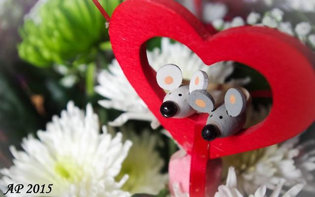 St Valentin / Valentines Day