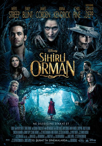 Sihirli Orman - Into the Woods (2015)