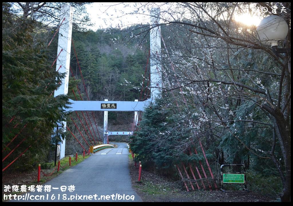 武陵農場賞櫻一日遊DSC_5500