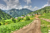 Heavenly Kashmir