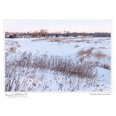 First Light, Winter, Grand River