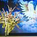 ChaoYang Acrobat Show in Beijing