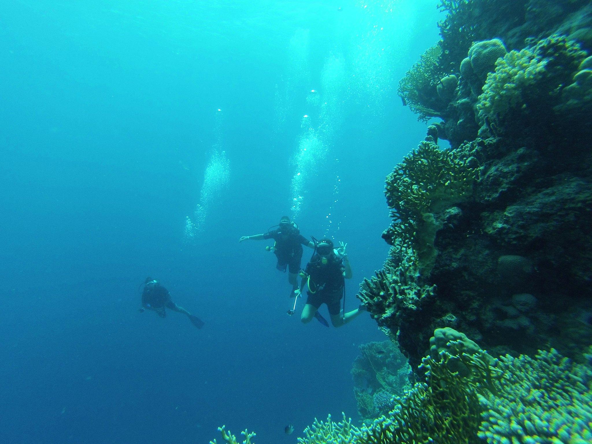 Hurghada Kızıldeniz Dalışı