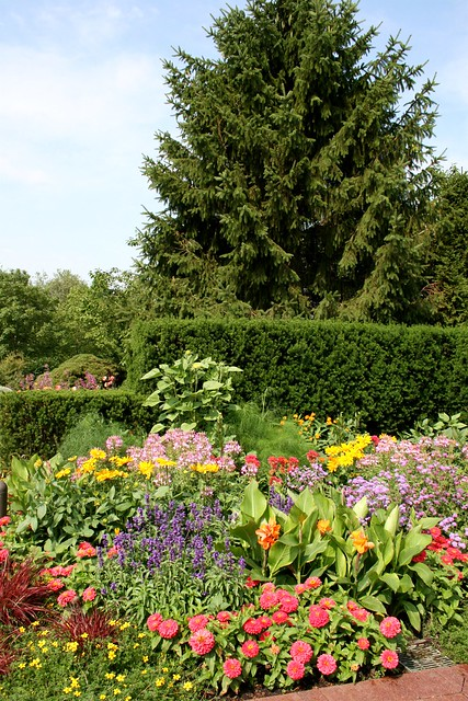 Chicago botanic garden flickr photo sharing for Chicago botanic garden membership