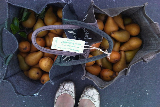 Potatoes, everyday growing cultures