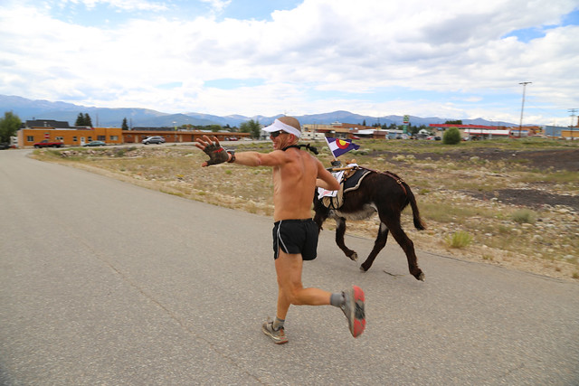 Leadville Burro Race 2013