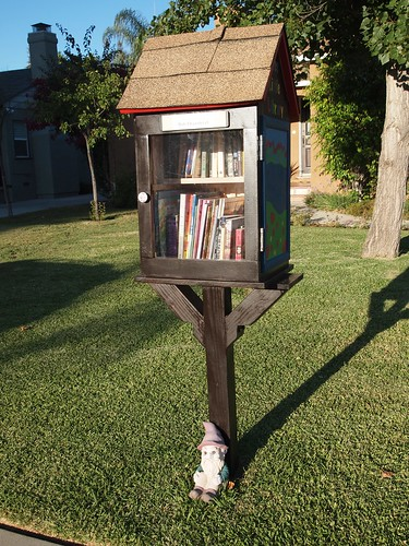 Free Little Library Update