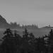 line of mist by T.Ferris 