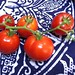 Tomatoes from the balcony garden! At last! by esquetee