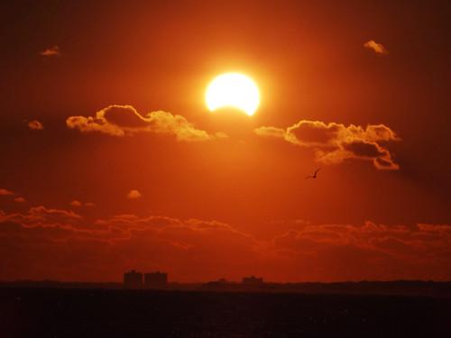 november sun moon beach sunrise virginia scenery norfolk oceanview solareclipse 2013 hybridsolareclipse