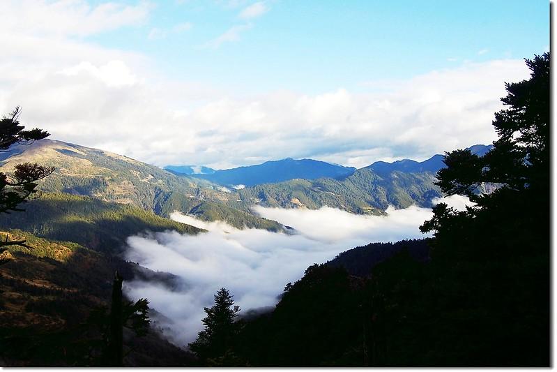 雲海(From 奇萊山登山步道) 1