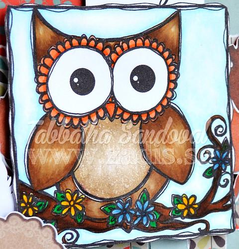 20131114_owl_close
