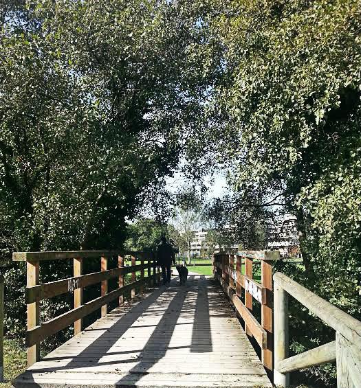 puente_alberymati