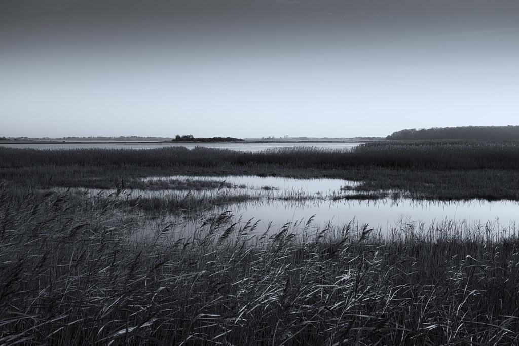 Suffolk Winter 2013-20