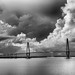 The Arthur Ravenel Jr. Bridge by mkmccrary