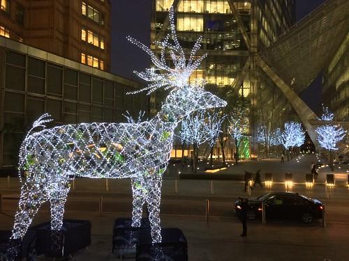 <p>Primrose Street reindeer at Christmas 2013</p>
