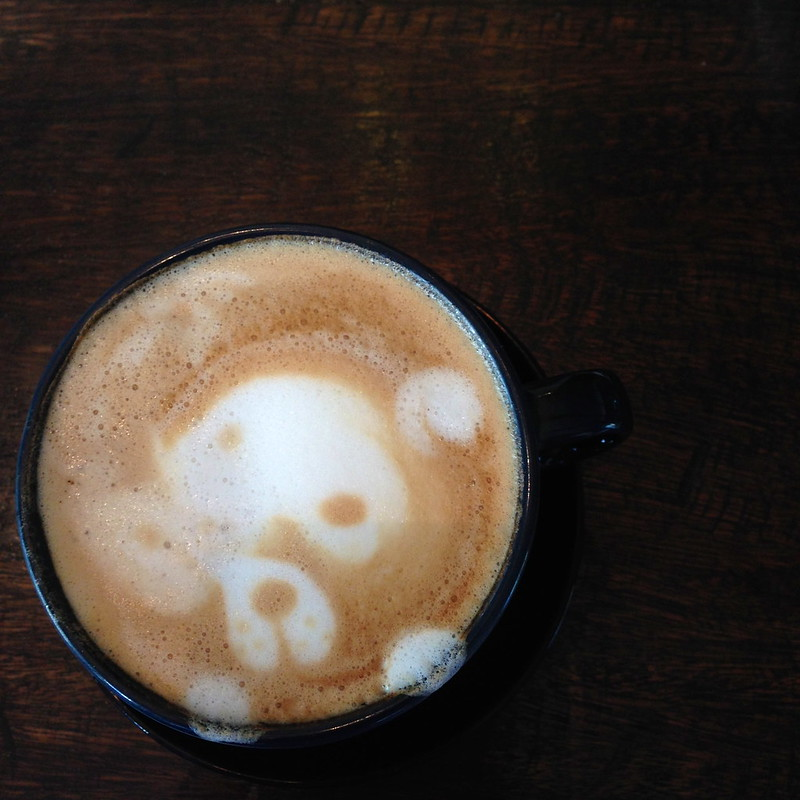 Blog Your Best Shot Workshop: My Pirate Bear. Ahoy there.