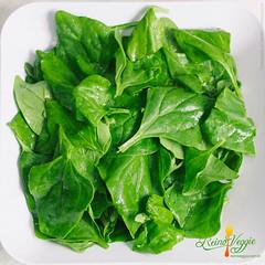 salad, vegetable, choy sum, komatsuna, leaf, leaf vegetable, herb, food,