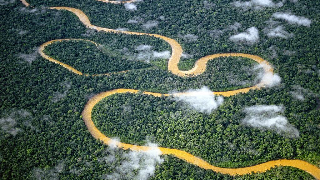 Parque nacional del Manu - Peru