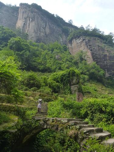 Fujian-Wuyi-Shuillandong-Dahongpao (56)