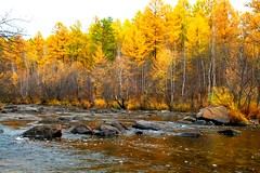 Nikishiha river